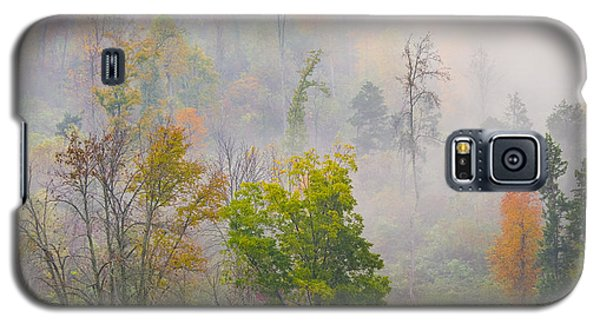 Woods From Afar Galaxy S5 Case