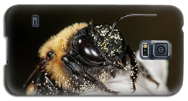 Worker Bee And Pollen Detail Galaxy S5 Case