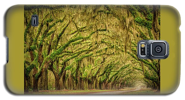 Wormsloe Drive Galaxy S5 Case by Phyllis Peterson