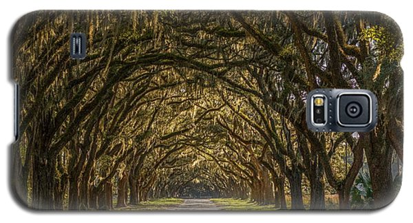 Wormsloe Historic Site Galaxy S5 Case