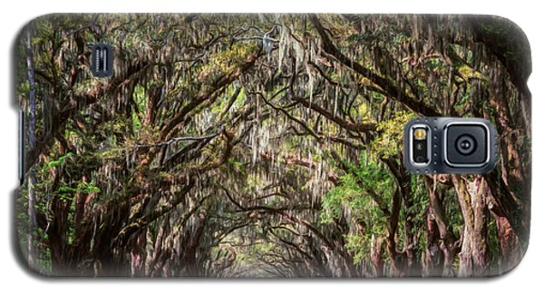 Wormsloe Plantation Oaks Galaxy S5 Case