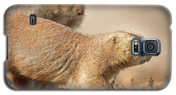 Galaxy S5 Case featuring the photograph Worried Prairie Dog by Robert Frederick