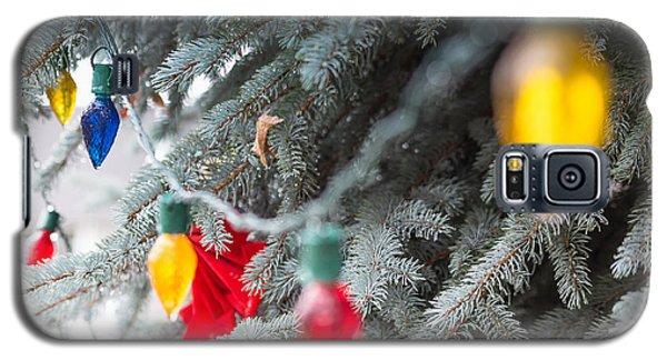Wrap A Tree In Color Galaxy S5 Case