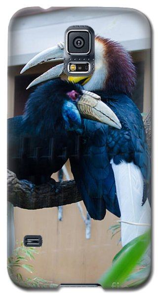 Wreathed Hornbills Galaxy S5 Case