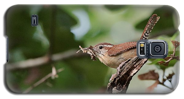 Wren Galaxy S5 Case