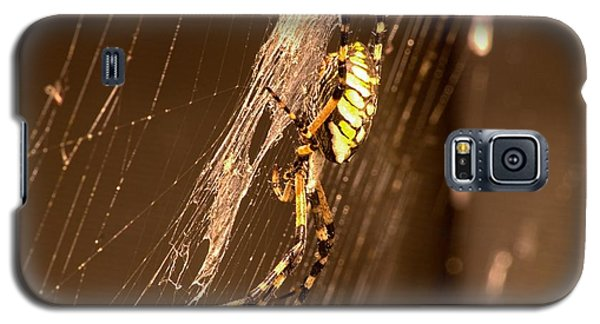 Writing Spider Galaxy S5 Case