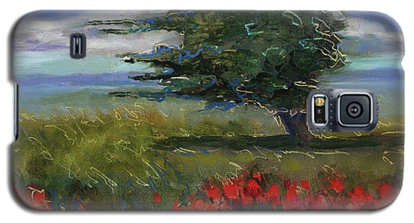 Wyoming Gentle Breeze Galaxy S5 Case by Billie Colson