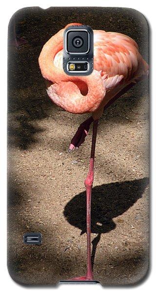 Xcaret Mexico Sleeping Flamingo Galaxy S5 Case