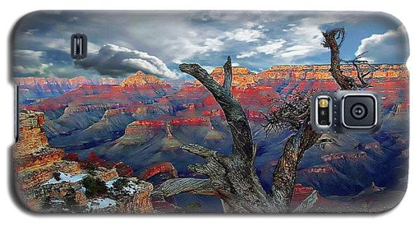 Yaki Point Grand Canyon Galaxy S5 Case