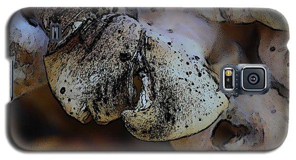 Yard Mushrooms Galaxy S5 Case
