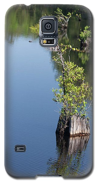 Galaxy S5 Case featuring the photograph Yawkey Wildlife Refuge - Cat Island by Suzanne Gaff