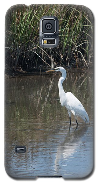 Galaxy S5 Case featuring the photograph Yawkey Wildlife Refuge - Great White Egret II by Suzanne Gaff