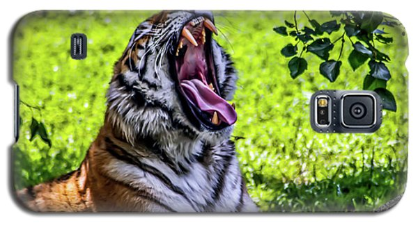 Yawning Tiger Galaxy S5 Case