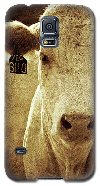 Galaxy S5 Case featuring the photograph Yeg 3110 by Trish Mistric