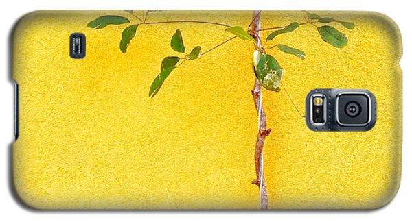 Galaxy S5 Case - Yellow #2 by Julie Gebhardt