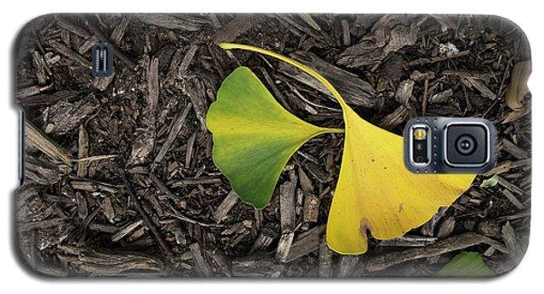 Yellow And Green Gingko Galaxy S5 Case