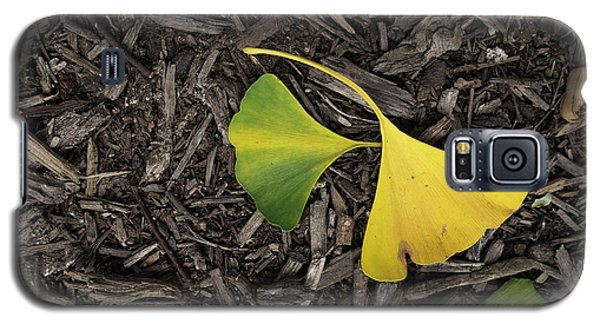 Yellow And Green Gingko Galaxy S5 Case