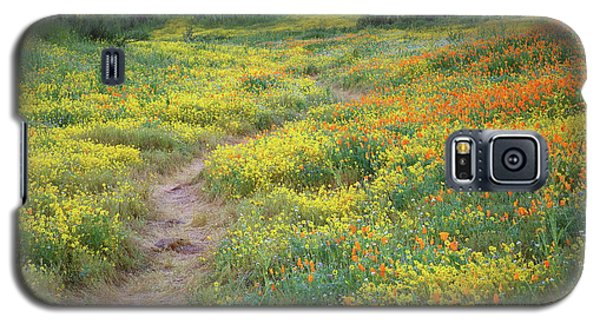 Galaxy S5 Case featuring the photograph Yellow And Orange Wildflowers Along Trail Near Diamond Lake by Jetson Nguyen