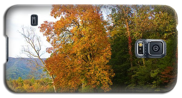 Galaxy S5 Case featuring the photograph Yellow And Red Tree by Bob Decker