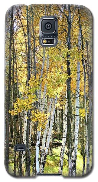 Yellow Aspens Galaxy S5 Case