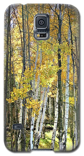 Yellow Aspens Galaxy S5 Case