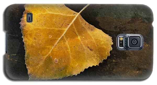 Yellow Autumn Leaf Galaxy S5 Case