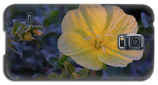 Galaxy S5 Case featuring the photograph Yellow Beach Evening Primrose by Marie Hicks