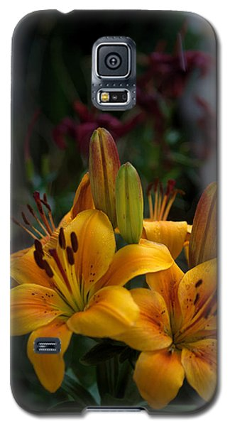 Galaxy S5 Case featuring the photograph Yellow Beauties by Cherie Duran
