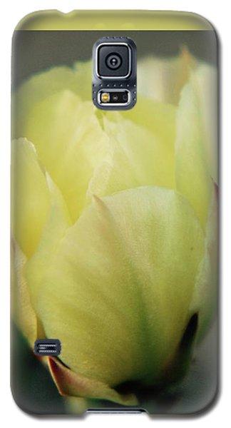 Yellow Beauty Galaxy S5 Case