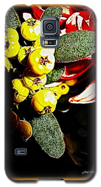 Galaxy S5 Case featuring the photograph Yellow Berries by Joan  Minchak