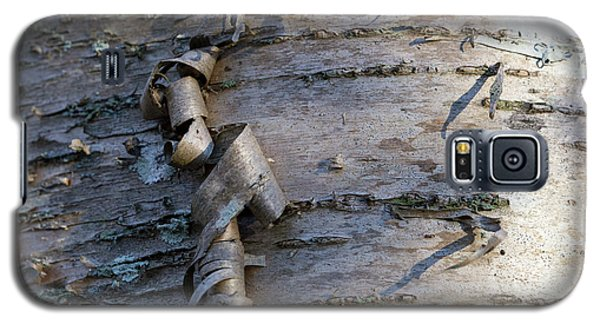 Galaxy S5 Case featuring the photograph Yellow Birch Details by Andrew Pacheco