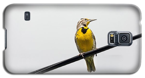 Yellow Bird Galaxy S5 Case by Rebecca Cozart