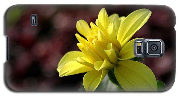 Yellow Bloom Galaxy S5 Case