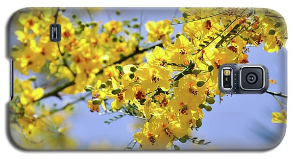 Yellow Blossoms Galaxy S5 Case