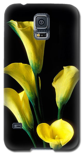 Lily Galaxy S5 Case - Yellow Calla Lilies  by Garry Gay
