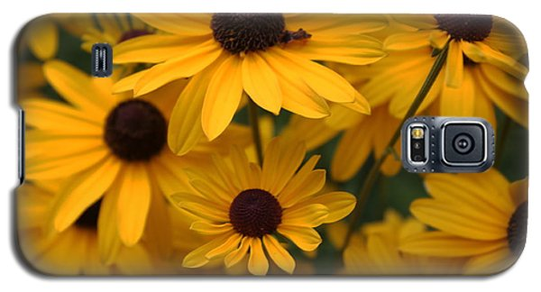 Yellow Coneflowers 2 Galaxy S5 Case
