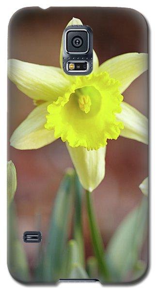 Yellow Daffodil Galaxy S5 Case