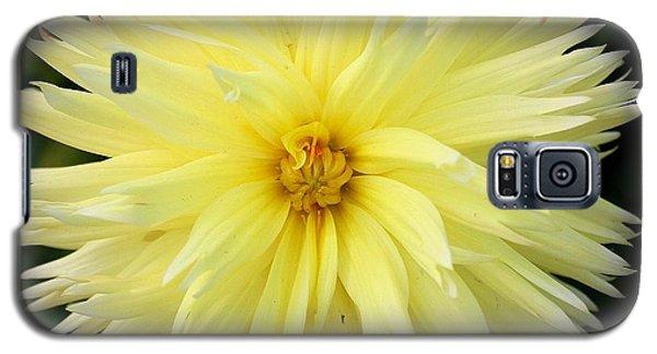Yellow Dahlia Galaxy S5 Case