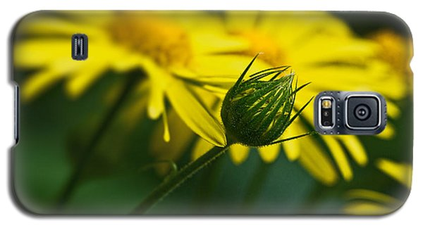 Yellow Daisy Bud Galaxy S5 Case
