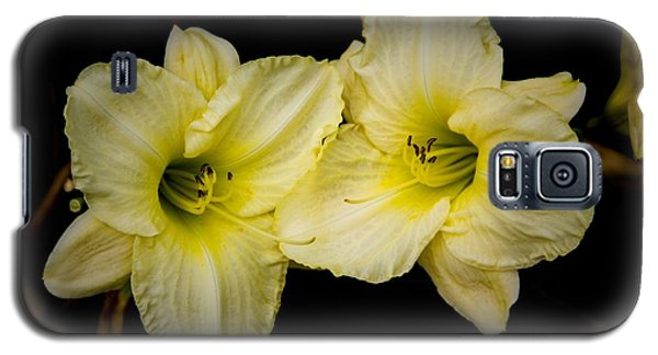 Yellow Day Lilies Galaxy S5 Case
