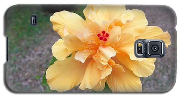 Yellow Double Hibiscus Galaxy S5 Case