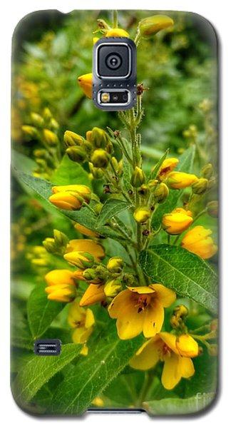 Yellow Dream  Galaxy S5 Case