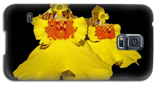 Galaxy S5 Case featuring the photograph Yellow Dresses by Judy Vincent