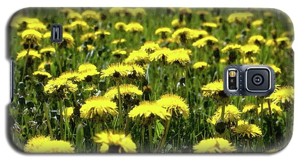 Yellow Field Two  Galaxy S5 Case by Lyle Crump