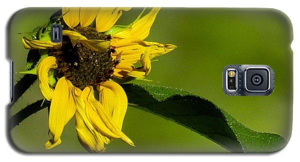 Yellow Flower 1 Galaxy S5 Case