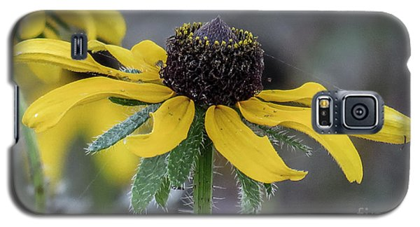 Yellow Flower 6 Galaxy S5 Case