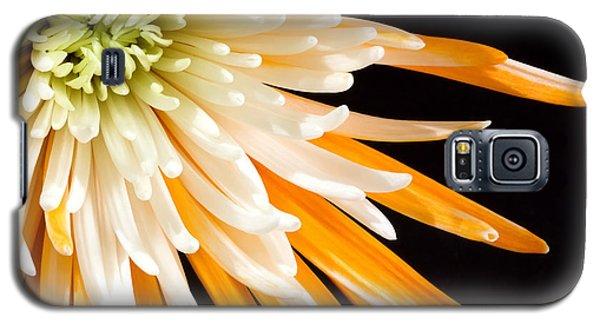 Yellow Flower On Black Galaxy S5 Case