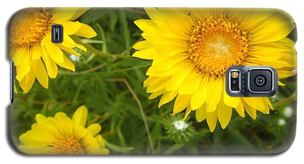 Yellow Flowers No. 1 Galaxy S5 Case by Sandy Taylor