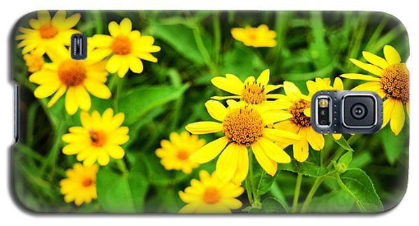 Yellow Flowers No. 2 Galaxy S5 Case