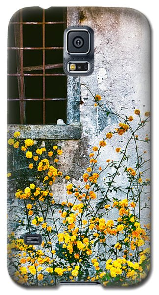 Galaxy S5 Case featuring the photograph Yellow Flowers And Window by Silvia Ganora